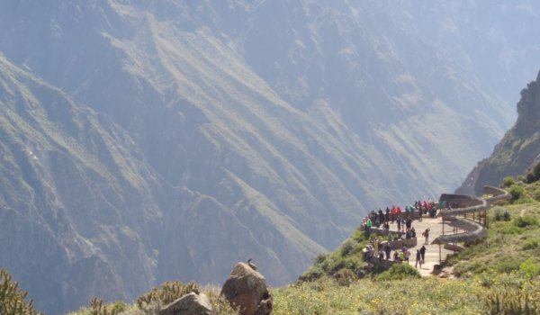 2-days tour Colca Valley with condor watching
