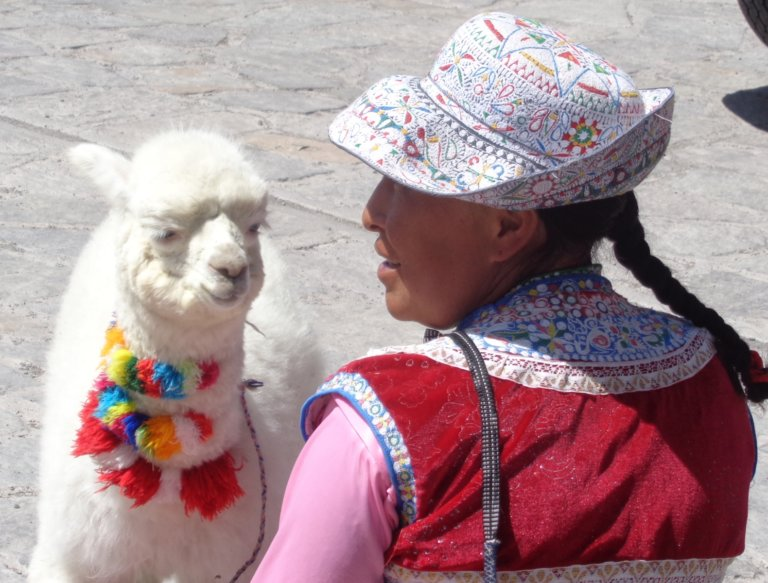 Woman with llama baby in Maca