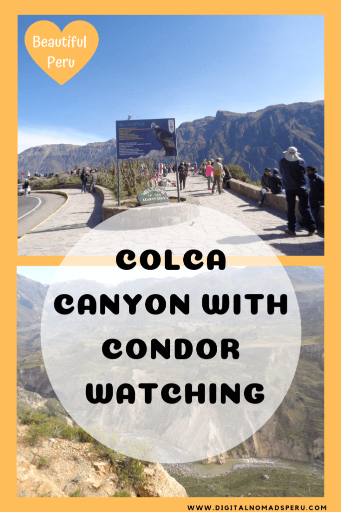 Colca Canyon with Condor Watching