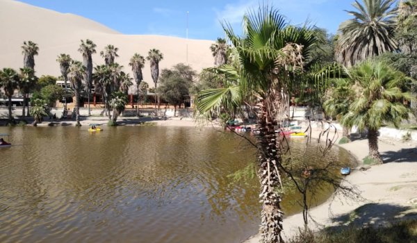 How to spend a day in Ica and Huacachina