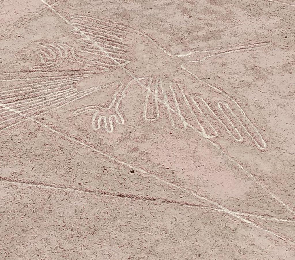 Nazca Lines Ica
