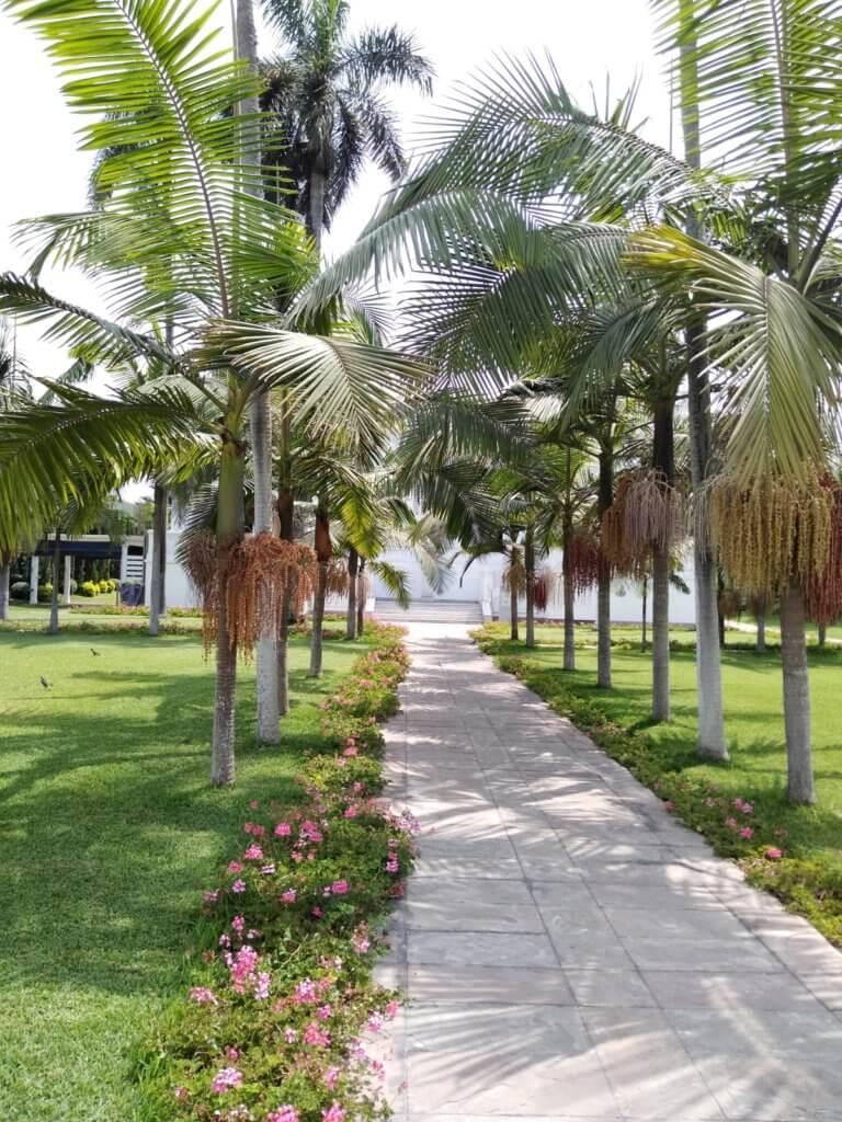 The garden at the Pedro de Osma Museum